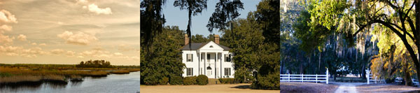 Friendfield Plantation in South Carolina