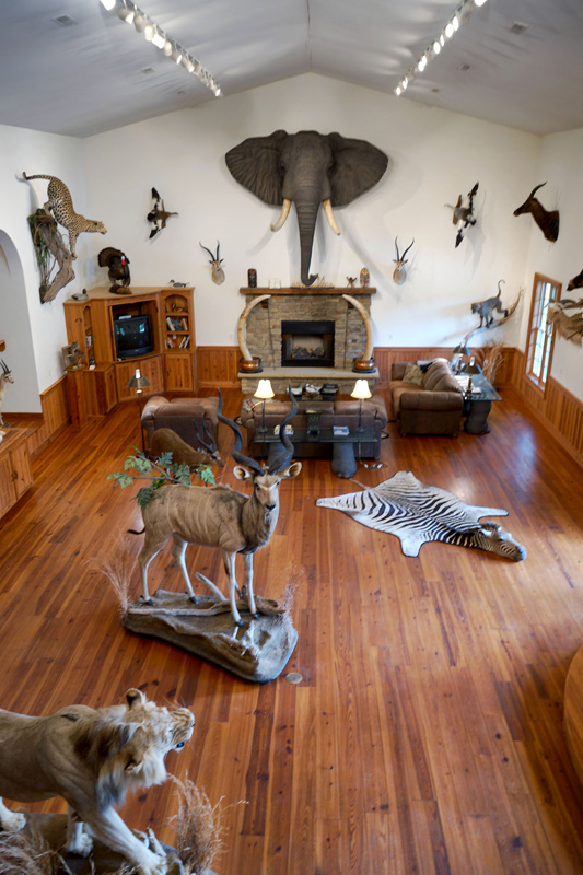Game Lodge with Trophy Room