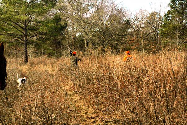 Fox Creek Plantation