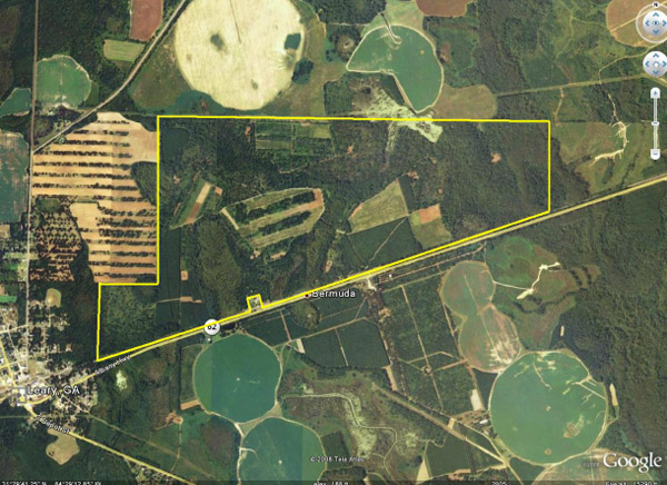 Owltama Farm - hunting land: Plantation Services specializes
